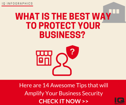 IQ Security Infographics Business Security