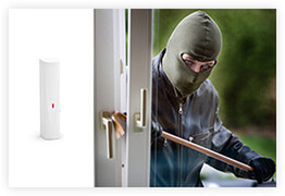 IQ Security Satel Alarm Detectors Intruder