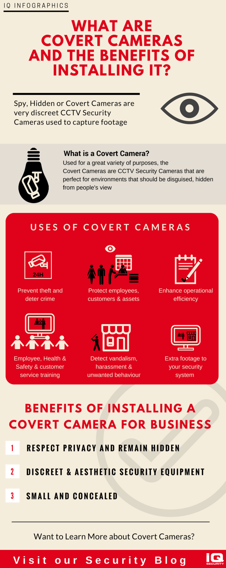 IQ Infographics Spy and Covert Cameras Benefits for Businesses